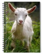 Baby Goat Spiral Notebook