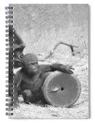 Baby Gorilla And Mom Spiral Notebook