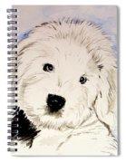 Baby Higgins Spiral Notebook