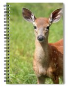 Baby In The Tall Grass Spiral Notebook