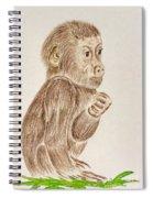 Baby Monkey  Spiral Notebook