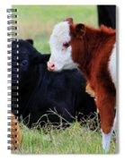 Baby Of The Herd Spiral Notebook