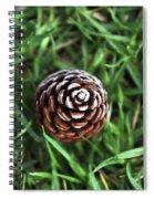 Baby Pine Cone Spiral Notebook
