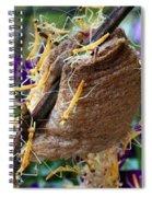 Baby Praying Mantises Spiral Notebook