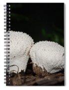 Baby Puffballs Spiral Notebook
