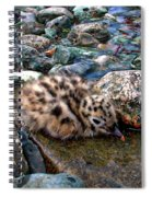 Baby Seagull Spiral Notebook