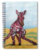 Baby Zebra Spiral Notebook
