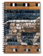 Babylon: Lion Spiral Notebook