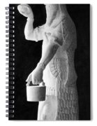 Babylonian God Of Healing, 5000 Bc Spiral Notebook
