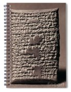 Babylonian Recipies Spiral Notebook