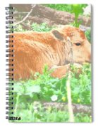 Baby's Home On The Range Spiral Notebook