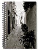 Back Alley Spiral Notebook