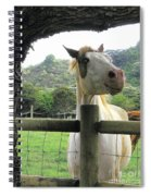 Back Fence Gossip Spiral Notebook
