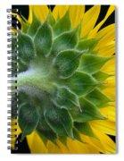 Back Of Sunflower Spiral Notebook