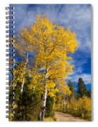 Back Road Beauty Spiral Notebook
