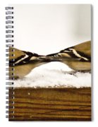 Back To Back American Gold Finches Spiral Notebook