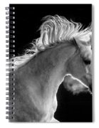 Backlit Arabian Spiral Notebook