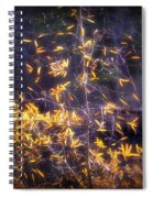 Backlit Beauty Spiral Notebook