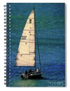 Backlit By The Sun Spiral Notebook