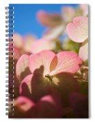 Backlit Hydrangea Spiral Notebook