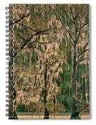 Backlit Moss-covered Trees Caddo Lake Texas Spiral Notebook