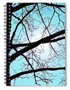 Backlit Tree Spiral Notebook