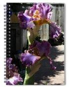 Backyard 3 Spiral Notebook