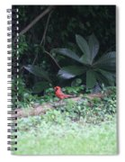 Backyard Friend Spiral Notebook