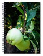 Backyard Garden Series - 2 Apples Spiral Notebook