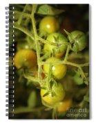 Backyard Garden Series - Green Cherry Tomatoes Spiral Notebook