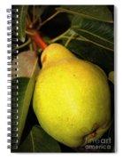 Backyard Garden Series - One Pear Spiral Notebook