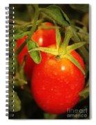 Backyard Garden Series - Roma Tomatoes Spiral Notebook
