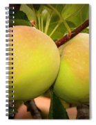 Backyard Garden Series - Two Apples Spiral Notebook