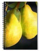 Backyard Garden Series - Two Pears Spiral Notebook
