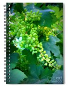 Backyard Garden Series - Young Grapes Spiral Notebook