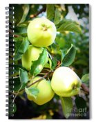 Backyard Garden Series- Golden Delicious Apples Spiral Notebook