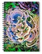 Backyard Mushroom  Spiral Notebook