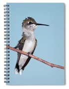 Bad Feather Day Spiral Notebook