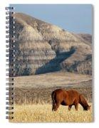 Badlands Canada Saskatchewan Spiral Notebook