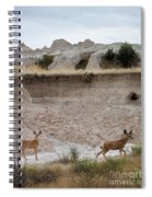 Badlands Deer Sd Spiral Notebook