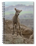 Badlands Dynamic Duo Spiral Notebook