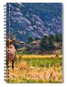 Badlands Elk  Spiral Notebook