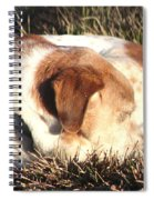 Bailey Resting Spiral Notebook