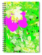 Baja Littleaf Rose Spiral Notebook