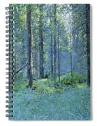 Balaam.thick Of The Forest Spiral Notebook