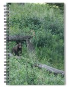 Balance Beam Spiral Notebook