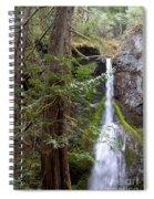 Balance In Nature Spiral Notebook