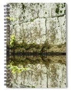 Balancing Act Spiral Notebook