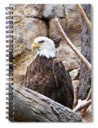 Bald Eagle - Portrait Spiral Notebook