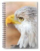 Bald Eagle 15 Spiral Notebook